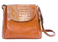 Alligator purse. Royalty Free Stock Image