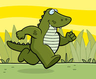 Alligator Running Stock Photography