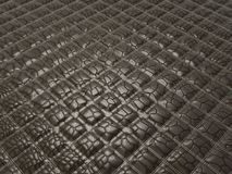 Alligator skin with stitched rectangles. Useful as background Stock Photos