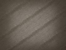 Alligator skin with stripes: useful as background or texture. Large resolution Stock Images