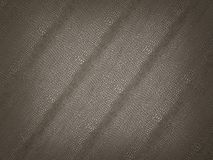 Alligator skin texture or background. Large resolution Royalty Free Stock Image
