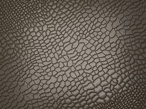 Alligator skin: useful as texture or background. Large resolution Stock Images