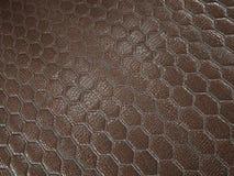 Alligator of slang bruine Leer hexagon gestikte textuur royalty-vrije stock afbeelding