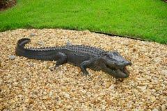 Alligator statue Stock Images