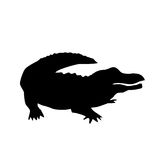 Alligator vector silhouette. Isolated vector silhouette of american alligator stock illustration