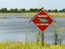 Alligator Warning Sign. Sign with spikes in St Marks National Wildlife Refuge, Florida, warning of alligators in the swampy & marshy areas Royalty Free Stock Photography