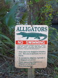 Alligator Warning Sign in Florida Park. No Swimming caution sign in Florida Caverns State Park warns visitors of alligators in the waterways and provides Royalty Free Stock Photo
