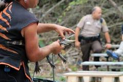 Alligatore del bambino della tenuta dell'istruttore Fotografie Stock Libere da Diritti