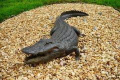 Alligatore falso Immagini Stock Libere da Diritti
