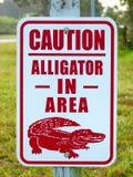 Alligatore nel segno di cautela di area Immagine Stock