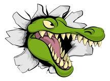 Alligatore o coccodrillo che attraversa il fondo illustrazione di stock