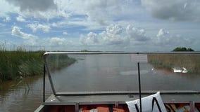 Alligatorn parkerar lager videofilmer