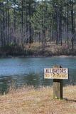 Alligators sign Stock Photos