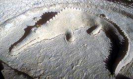 alligatorsandskulptur Arkivfoton
