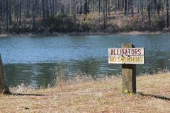 Alligatorzeichen Stockfoto