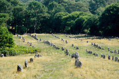 Allineamenti neolitici Fotografia Stock