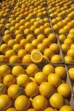 Allineamento arancione delle caselle Fotografia Stock