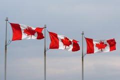 allineamento canadese della bandierina Fotografia Stock