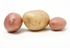 Allineamento della patata Fotografie Stock