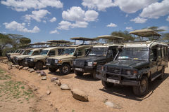 Allineamento delle jeep di safari Fotografie Stock
