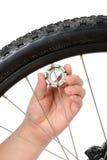 Allineamento e manutenzione della ruota della bici Fotografia Stock