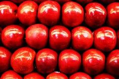 Allineamento rosso del Apple Fotografie Stock Libere da Diritti