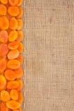 Allini, albicocca secca e tela da imballaggio per il menu Fotografia Stock Libera da Diritti