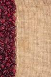 Allini, mirtilli rossi e tela da imballaggio secchi per il menu Fotografie Stock