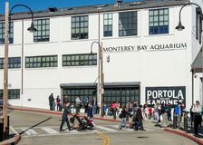 Allini per entrare nell'acquario della baia di Monterey Immagine Stock