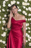 Allison Janney images libres de droits