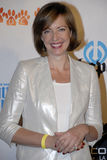 Allison Janney no tapete vermelho. imagem de stock royalty free
