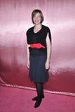 Allison Janney, sfilata di moda Fotografia Stock Libera da Diritti