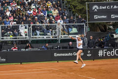 Allison Riske brindisi fed cup 2015 Stock Images