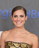 Allison Williams Fotografie Stock Libere da Diritti