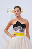 Allison Williams Immagine Stock