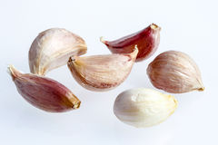 allium φρέσκο σκόρδο γαρίφαλων γαρίφαλων Στοκ Φωτογραφία