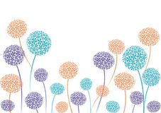 Allium border Royalty Free Stock Images