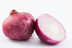 Allium cepa rosso della cipolla della lampadina Immagini Stock