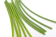 Allium o porro dell'aglio Fotografie Stock Libere da Diritti