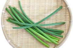 Allium o puerro del ajo foto de archivo libre de regalías