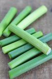 Allium o puerro del ajo imagenes de archivo