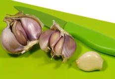 Allium sativum conosciuto comunemente come aglio Immagine Stock Libera da Diritti
