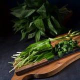 Allium ursinum. A fresh and tasty Allium ursinum stock images