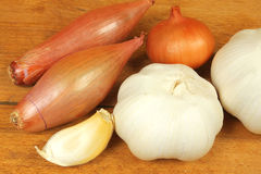 Allium vegetables Royalty Free Stock Images