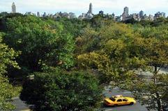 Allmän sikt av Central Park Royaltyfria Foton