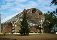 Allmänhet parkerar julträdet i florida arkivfoton