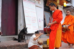 Allmosa som ger ceremoni i Luang Prabang, Laos Arkivbild