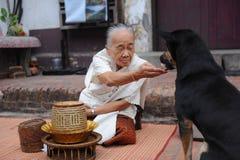 Allmosa som ger ceremoni i Luang Prabang, Laos Royaltyfri Bild