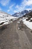Allo zero assoluto nel Sikkim del nord. Fotografia Stock Libera da Diritti