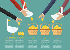 Allocating golden eggs into more than one basket infographic Stock Images